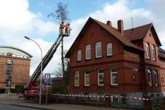 Auch auf den Grundstücken Lindhooper Straße 48 und 50 mussten Bäume gefällt werden.