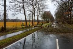 Während eines starken Regenschauers stürzte ein Baum auf die L158 zwischen Verden und Langwedel.