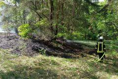 Feuerwehrleute löschen einen der Brände im Stadtwald ab.