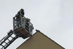 Die Besatzung der Drehleiter nähert sich der auf dem Dach sitzenden Katze.