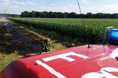 Auf insgesamt 500 Quadratmetern brannte es auf dem landwirtschaftlichen Weg.