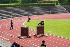Dabei standen vor allem Schnelligkeit und Geschicklichkeit auf dem Prüfstand wie hier beim Staffellauf.