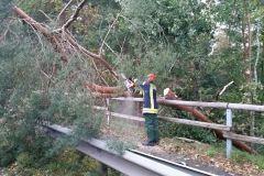 An mehreren Stellen blockierten umgestürzte Bäume die Fahrbahnen.