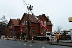 22.02.2016 - Baumfällarbeiten auf den Grundstücken Lindhooper Straße 50 und 48 durch eine Firma.