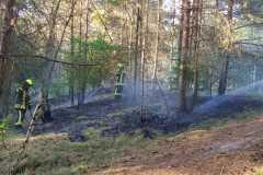 Löscharbeiten im Stadtwald.