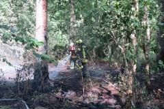 Löscharbeiten im Unterholz eines Waldstückes nahe des Industriegebietes Finkenberg.
