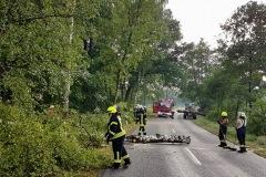 Mit Motorsägen wurden die Bäume zerkleinert und mithilfe eines Radladers beiseite geräumt.