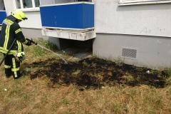 Flächenbrand am Niedersachsenring am Freitag.