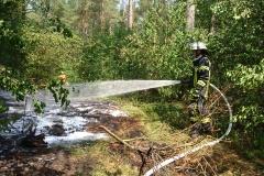 Rund 100 Quadratmeter Unterholz brannten.