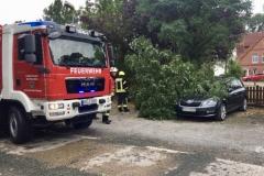 In Groß Hutbergen fiel unter anderem ein Baum auf ein PKW.