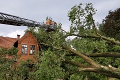 In Daverden stürzte ein Baum auf ein Wohnhaus – über die Drehleiter der Ortsfeuerwehr Verden wurde der Baum stückweise abgetragen.