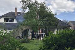 Baum liegt auf Hausdach.