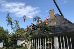Die Absturzsicherungsgruppe der Stadtfeuerwehr Verden entastete den Baum und befestigte diesen am Kran.