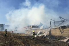 Am Samstagmittag brannte ein Rinderstall in voller Ausdehnung.