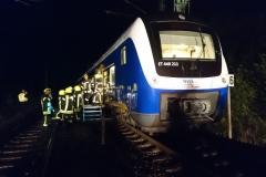 Um den Fahrgästen den Ausstieg aus dem Zug zu erleichtern, wurde eine Rettungsplattform in Stellung gebracht.