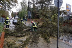 In der Zollstraße stürzte ein Baum auf die Straße und beschädigte umliegende Grundstücksmauern.