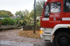 In der Eisseler Straße stürzte ein Baum auf ein Haus und blieb anschließend auf einem in einer Hofeinfahrt abgestellten PKW liegen.