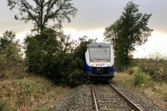 Auf der Bahnstrecke Langwedel-Uelzen kollidierte ein Zug mit einem Baum.