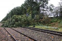 Die Bahnstrecke Verden-Rotenburg wurde in Höhe des Waller Bahnhofs durch zahlreiche umgestürzte Bäume blockiert.