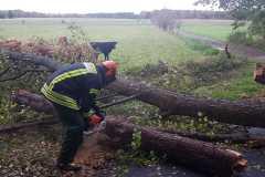 Im Osterfeld stürzte ebenfalls ein Baum auf die Straße und musste durch die Feuerwehr entfernt werden.