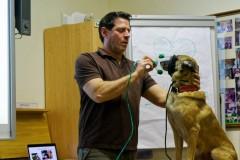Hundetrainer Marcus Wolff zeigt den Umgang mit Tierbeatmungsmasken.