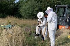 Einsatzkräfte in Insektenschutzanzügen siedelten das Wespennest um.