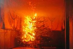 Brandversuch mit einem Weihnachtsbaum in einem Brandübungscontainer.