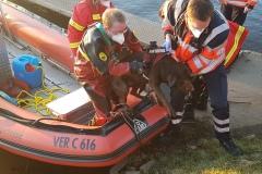 Mit Hilfe eines Bootes konnten die Einsatzkräfte den Hund retten.