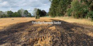 Abgebranntes Stoppelfeld auf knapp 500 m² Fläche